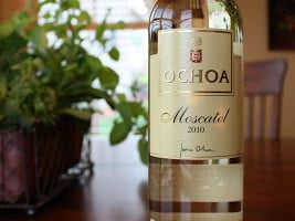 Ochoa Moscatel De Grano Menudo – 500ml Never Went Down So Easy
