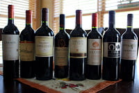 2010_Wines_of_Chile_Carmenere