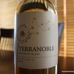 TerraNoble Sauvignon Blanc – A Fabulous Find For $5.99
