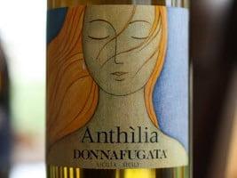 Donnafugata Anthilia Sicilia Bianco – A Succulent Sicilian