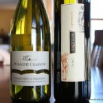Excellent Italian Whites – Exploring the White Wines of Italy!