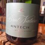 Antech Brut Nature Blanquette de Limoux – Bargain Bubbles