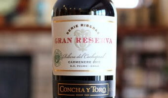 Concha y Toro Gran Reserva Serie Riberas Carmenere – Mix It Up!