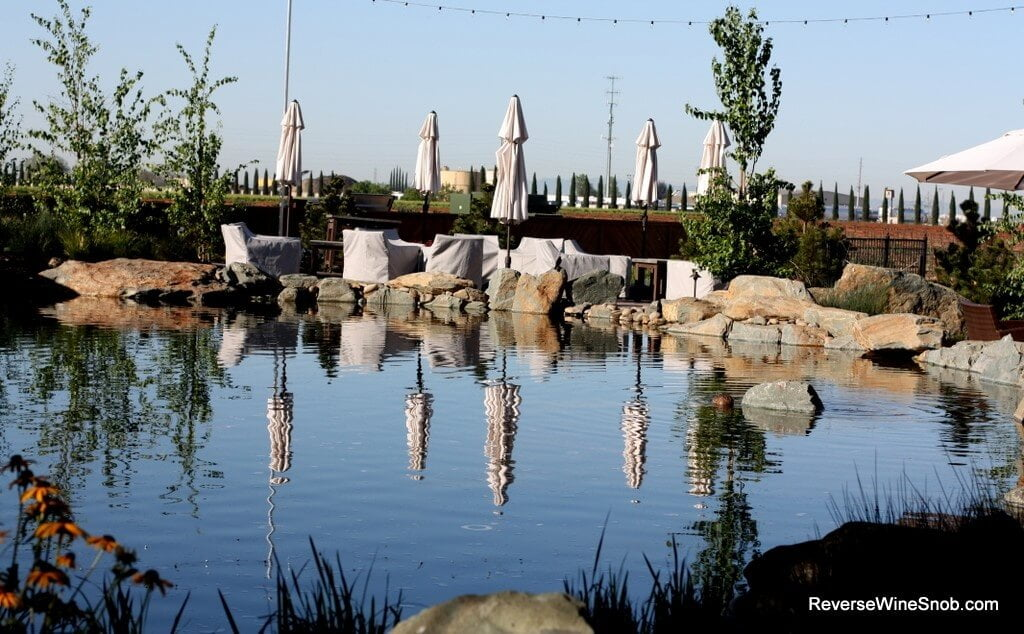 A serene setting for sipping wine at Michael David Winery!