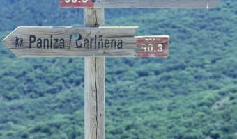 Exploring Carinena and the Vinas Viejas de Paniza Garnacha – A Spanish Wonder