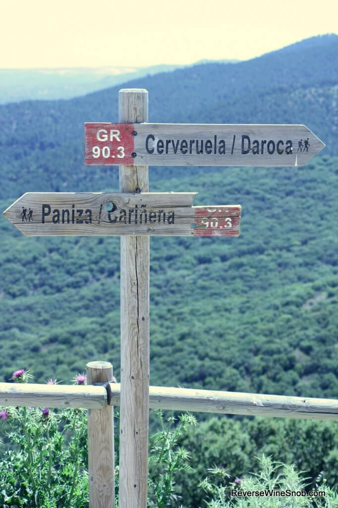Garnacha from Carinena - A Spanish Wonder
