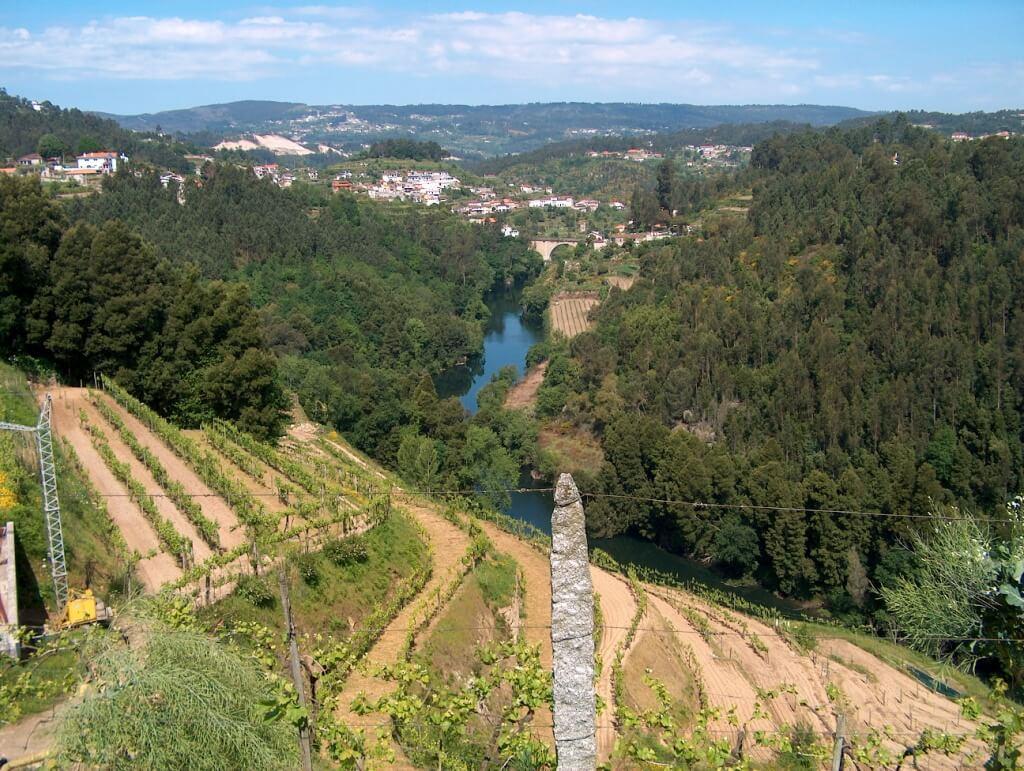 Get To Know Vinho Verde!