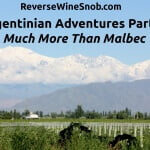 Argentinian Adventures Part 1: Much More Than Malbec