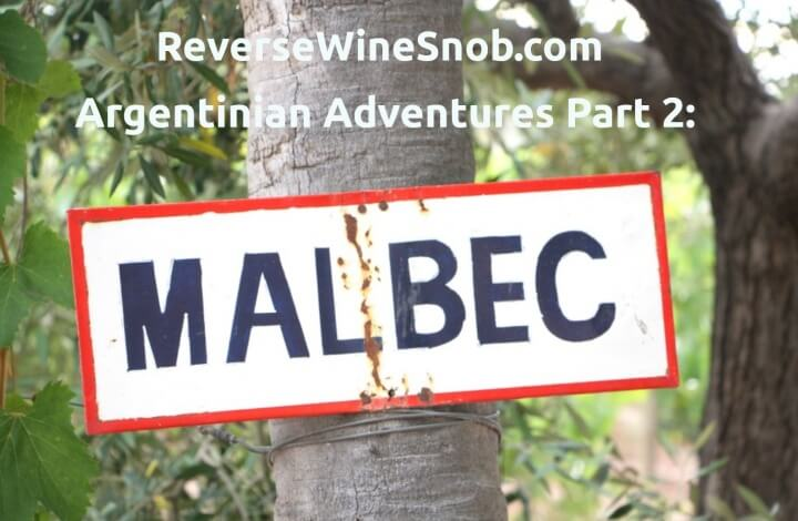 Argentinian Adventures Part 2: Malbec