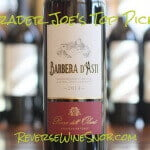 Rosa dell'Olmo Barbera d'Asti - A Darn Good Wine For The Price