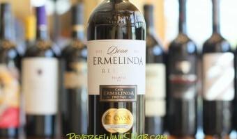 Dona Ermelinda Reserva – Big and Tasty