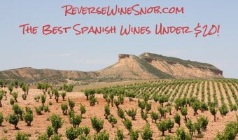 The Best Spanish Wine Under $20 - The Reverse Wine Snob Picks!