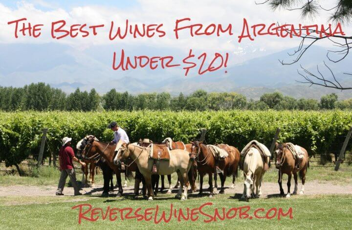 The Best Wine From Argentina Under $20 - The Reverse Wine Snob Picks