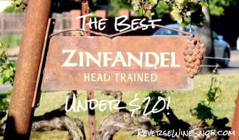 The Best Zinfandel Under $20 - The Reverse Wine Snob Picks!