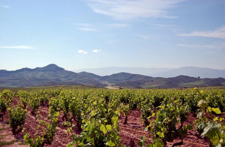 La Rioja - A Spanish Region That Is A Feast For The Senses!