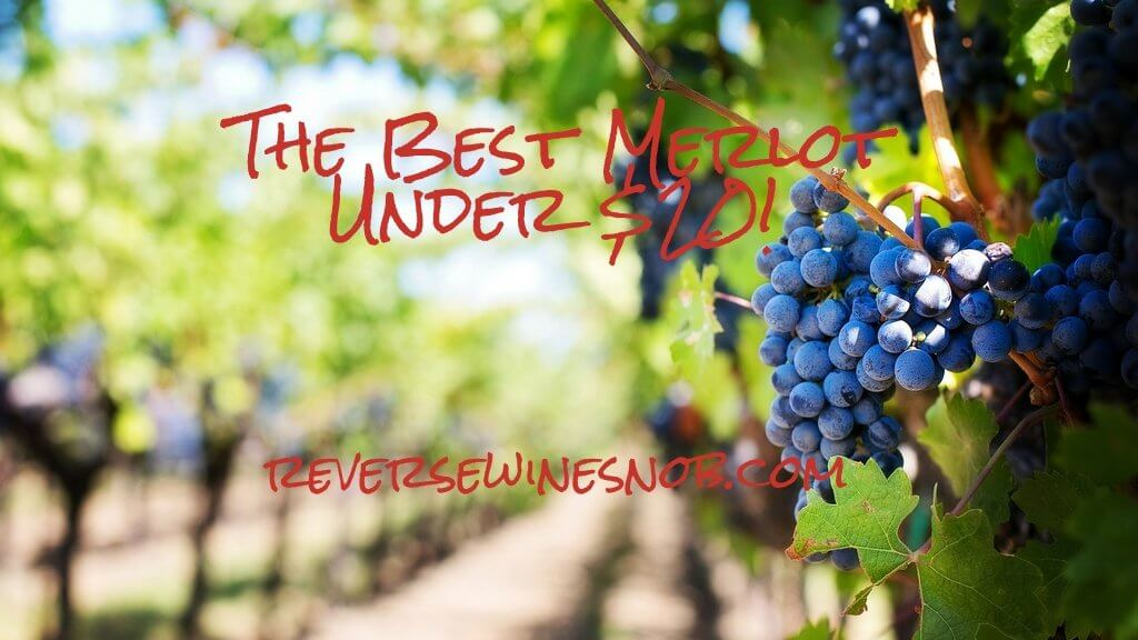 The Best Merlot - The Reverse Wine Snob Picks!