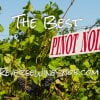 The Best Pinot Noir Under $20