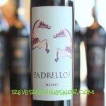 Padrillos Malbec - Easy Drinkin'