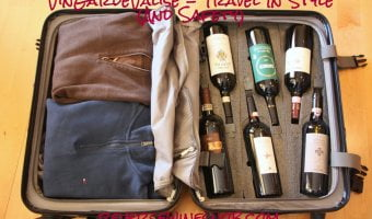 VinGardeValise – Travel In Style and Safety