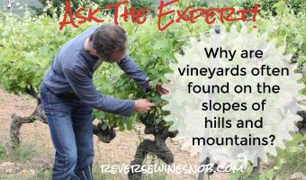 Why Are Vineyards Often Found On The Slopes of Hills and Mountains? Ask The Expert!