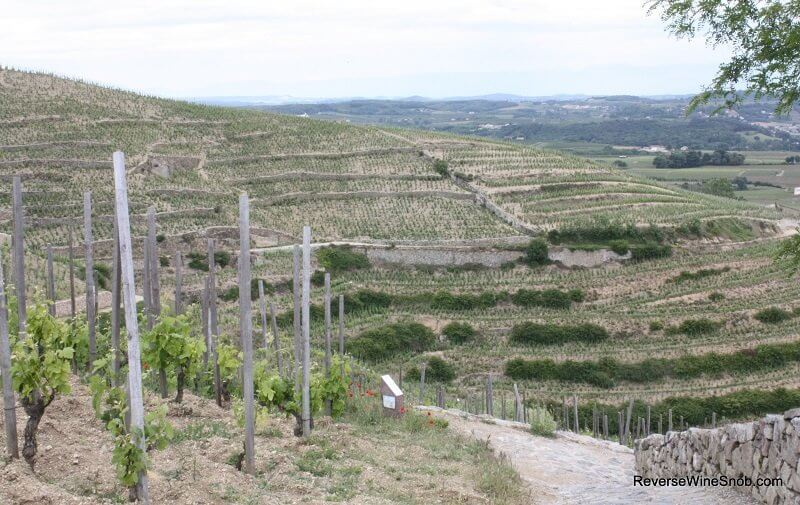 Hermitage in the Rhone Valley