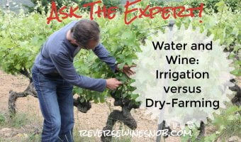 Water and Wine – Irrigation And Dry Farming. Ask The Expert!
