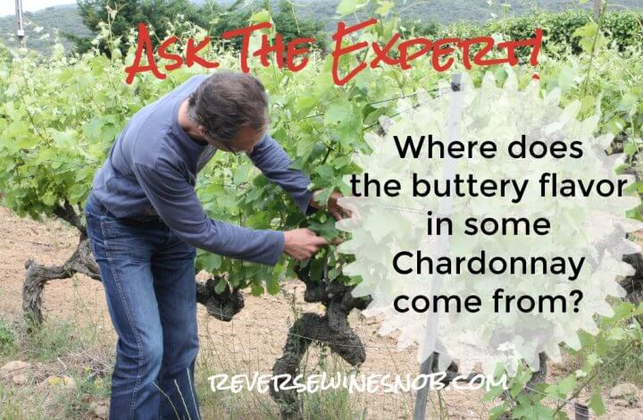 Where Does The Buttery Flavor in Some Chardonnay Come From? Ask The Expert!