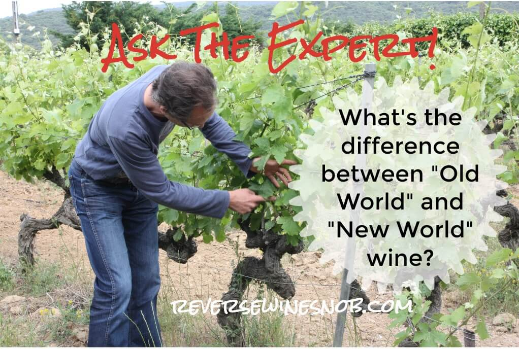 What's The Difference Between Old World Wines and New World Wines? Ask The Expert!