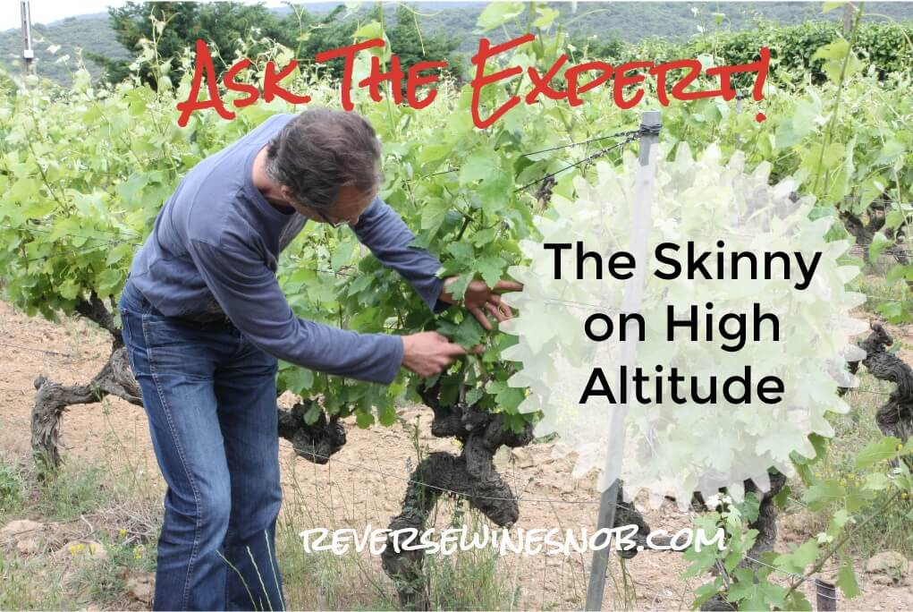 How Does Altitude Affect Wine? Ask The Expert!