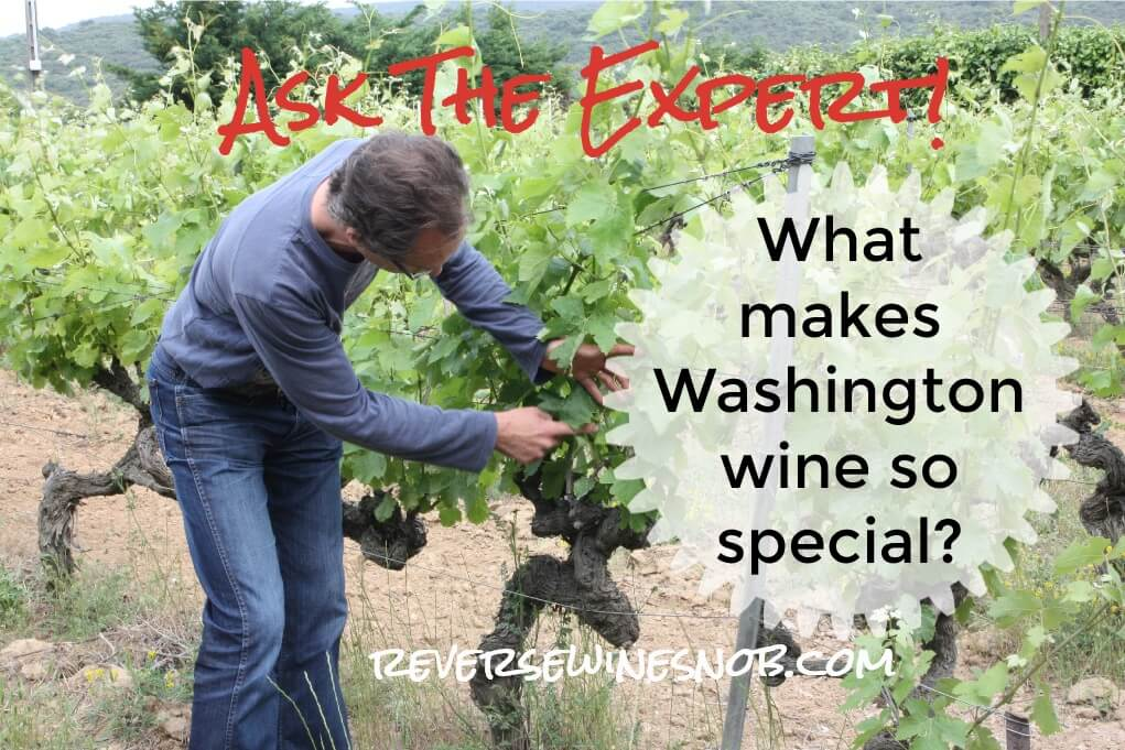What Makes Washington Wine Special? Ask The Expert!