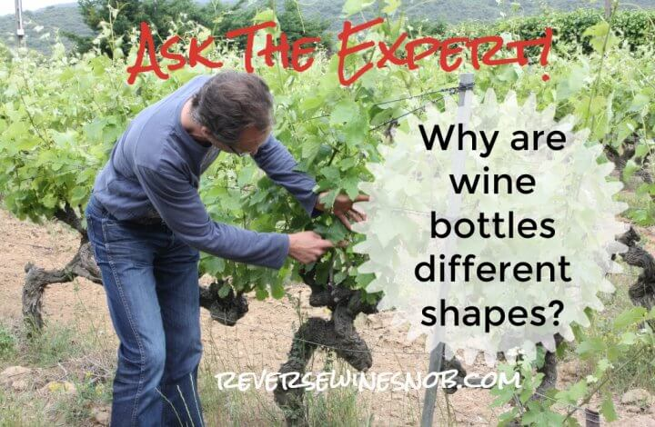 Why Are Wine Bottles Different Shapes? Ask The Expert!