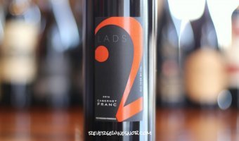 2 Lads Cabernet Franc - Marvelous Michigan