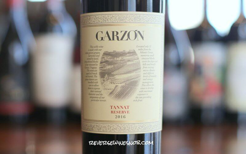 Bodega Garzon Tannat Reserve - Bring It On