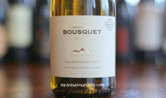 Domaine Bousquet Reserve Chardonnay - Clean and Tasty