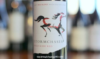 Stormchaser Wild Ride Red – A Smooth Filly
