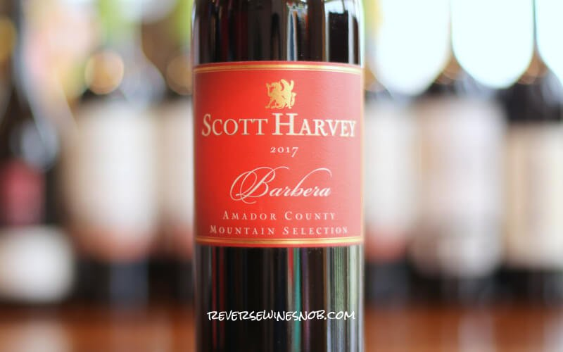 INSIDER DEAL! Scott Harvey Mountain Selection Barbera – That's Amore!