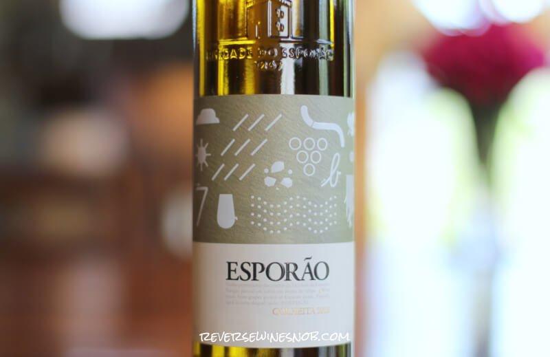 EsporaoColheitaBranco - Fresh and Creamy