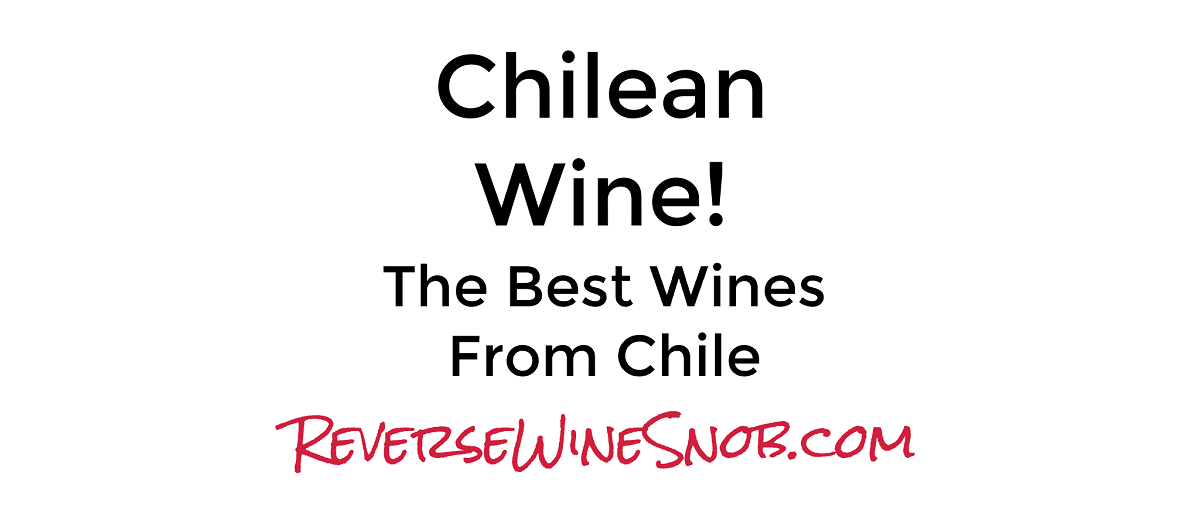 Chilean Wine - The Best Wines from Chile
